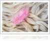 Things to know about fur cleaning - Thumb